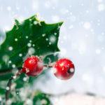 Quel est le sens du gui et du houx, à Noël ?